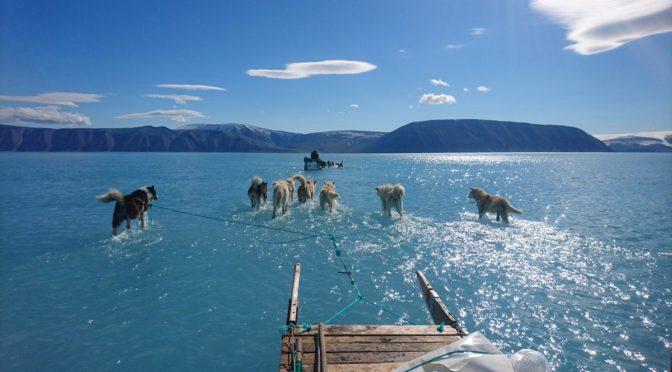Grönlandon a klímaváltozás már ökológiai gyászhoz vezet, és egyre több helyen ez várható