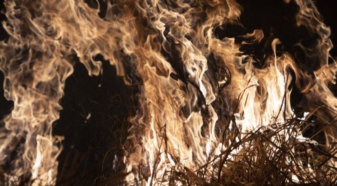 Több száz újabb helyen észleltek erdőtüzeket a lángoló Amazóniában