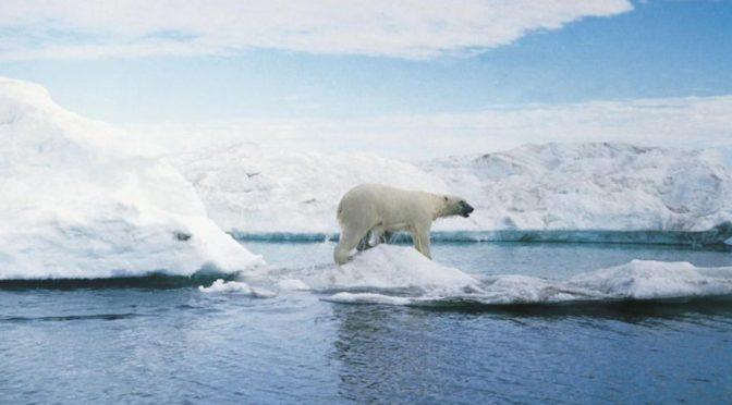 Fájó látni, milyen drámai átalakuláson ment át az Északi-sark jege az elmúlt 35 évben