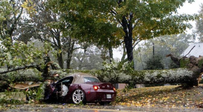 800 000 embert hagyott áram nélkül, és kettőt megölt a vihar