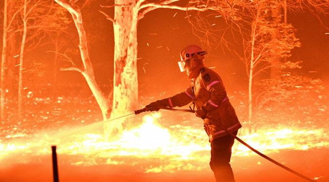 Ausztrál erdőtűz: turisták menekülnek a veszélyzónából, már ha jut nekik benzin