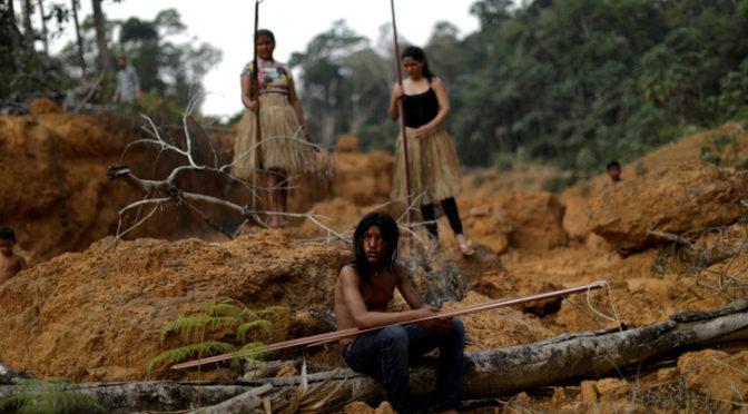 Még a mi életünkben eltűnhet az amazonasi esőerdő