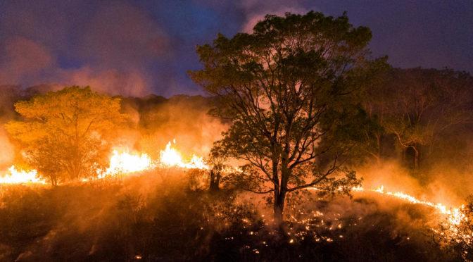 Másfélmillió hektárnyi terület égett le a Föld legnagyobb trópusi mocsarának térségében