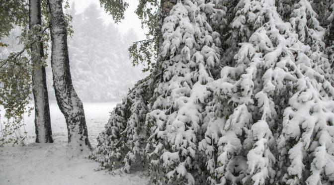 Hatalmas mennyiségű eső a hegyekben havazással