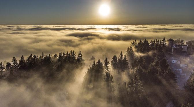 Hidegpárna, zúzmara, glória, valamint egyéb csodák a földről és levegőből