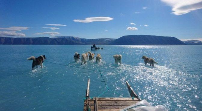 Hamarosan megállíthatatlanná válhat Grönland jegének olvadása