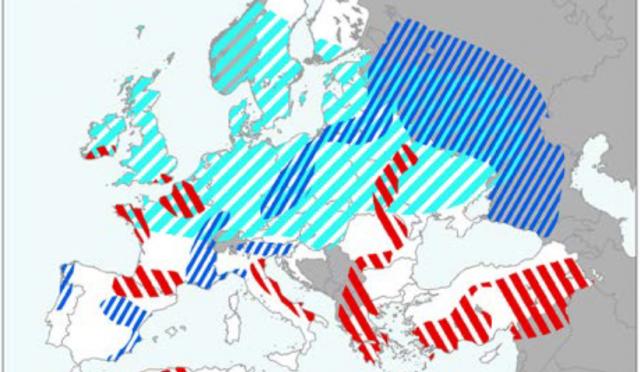 2021. májusi nemzetközi agrometeorológiai helyzetkép termésbecslésekkel